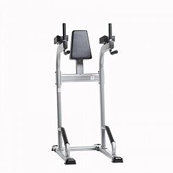 CVR-341 Vertical Knee Raise/Dip Stand
